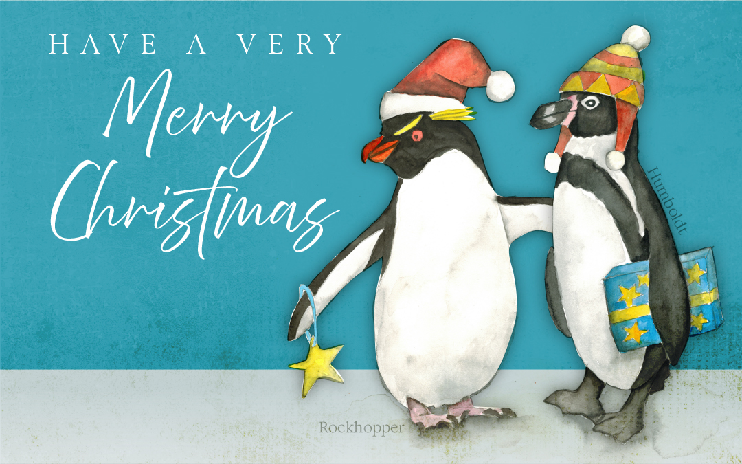 Christmas Greetings from Penguin Boy